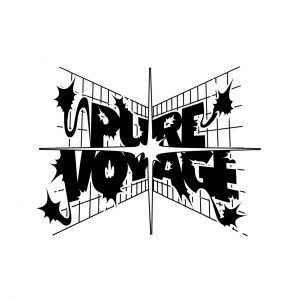 Pure Voyage